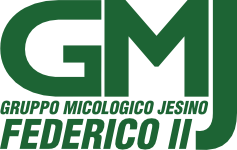 "GMJ – Gruppo Micologico Jesino ""FEDERICO II"""
