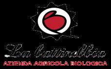 Escursione per erbe spontanee presso La Battinebbia