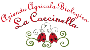 Escursione per erbe spontanee presso la Coccinella
